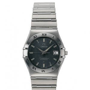 Constellation Automatic 27.5 Stainless Steel / Grey